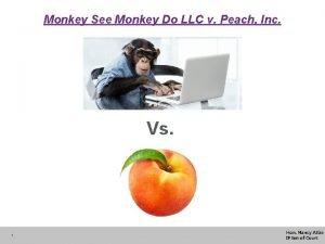 Monkey See Monkey Do LLC v Peach Inc