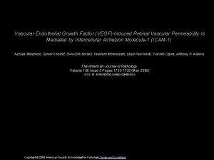 Vascular Endothelial Growth Factor VEGFInduced Retinal Vascular Permeability