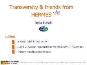 Transversity friends from HERMES Delia Hasch outline a