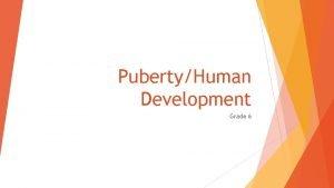 PubertyHuman Development Grade 6 Changes in Early Adolescence
