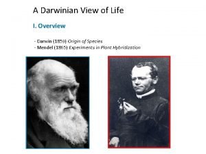 A Darwinian View of Life I Overview Darwin