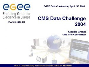 EGEE Cork Conference April 19 th 2004 www