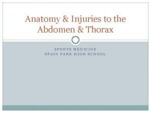 Anatomy Injuries to the Abdomen Thorax SPORTS MEDICINE