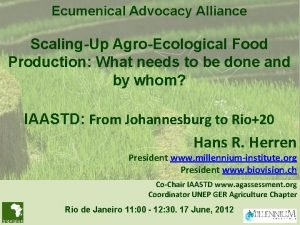 Ecumenical Advocacy Alliance ScalingUp AgroEcological Food Production What