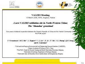 VALERI Meeting 10 March 2005 INRA Avignon France