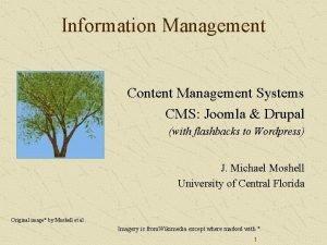 Information Management Content Management Systems CMS Joomla Drupal