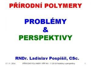 PRODN POLYMERY PROBLMY PERSPEKTIVY RNDr Ladislav Pospil CSc