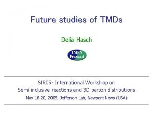 Future studies of TMDs Delia Hasch SIR 05