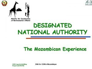 Ministry for Coordenation of Environmental Affairsl DESIGNATED NATIONAL