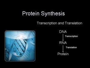 Protein Synthesis Transcription and Translation DNA Transcription RNA