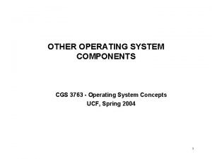 OTHER OPERATING SYSTEM COMPONENTS CGS 3763 Operating System