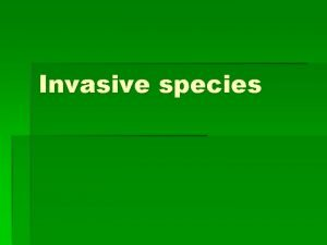 Invasive species What do you think an invasive