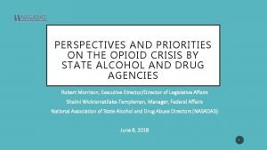 PERSPECTIVES AND PRIORITIES ON THE OPIOID CRISIS BY