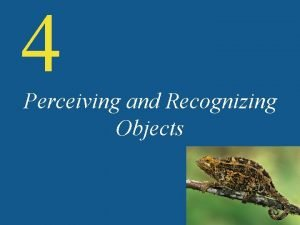 4 Perceiving and Recognizing Objects Object Recognition Objects