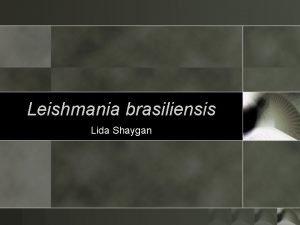 Leishmania brasiliensis Lida Shaygan Background o o Transmitted