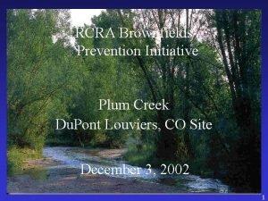 RCRA Brownfields Prevention Initiative Plum Creek Du Pont