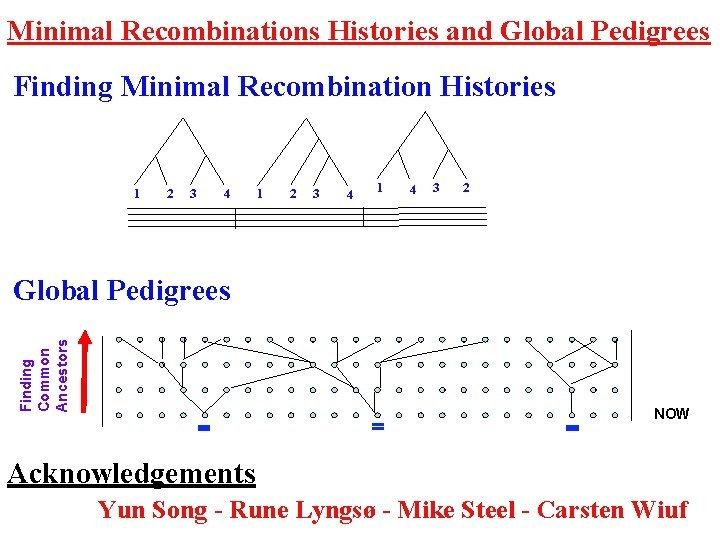 Minimal Recombinations Histories and Global Pedigrees Finding Minimal