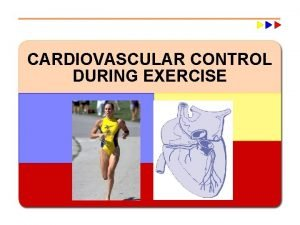 CARDIOVASCULAR CONTROL DURING EXERCISE Major Cardiovascular Functions w