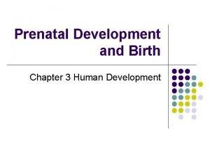 Prenatal Development and Birth Chapter 3 Human Development