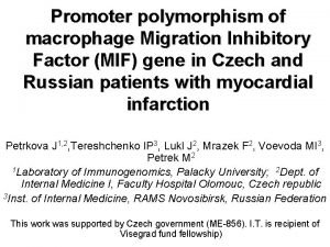 Promoter polymorphism of macrophage Migration Inhibitory Factor MIF