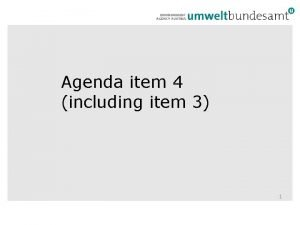 Agenda item 4 including item 3 1 Institutional