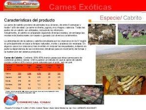Carnes Exticas Especie Cabrito Caractersticas del producto La