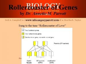 BIOLOGY Rollercoaster of Genes CONCEPTS CONNECTIONS Fourth Edition