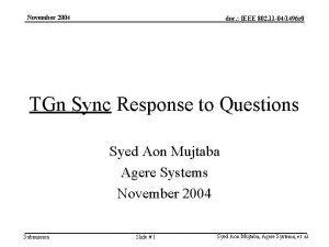 November 2004 doc IEEE 802 11 041496 r