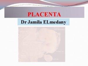 PLACENTA Dr Jamila ELmedany OBJECTIVES Clarify the time