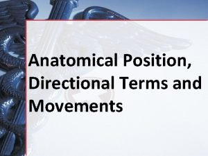 Anatomical Position Directional Terms and Movements Objectives Properly