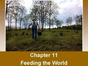 Chapter 11 Feeding the World Feeding the World