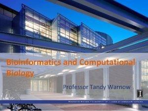 Bioinformatics and Computational Biology Professor Tandy Warnow Bioinformatics
