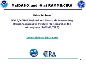 Mc IDASX and V at RAMMBCIRA Debra Molenar