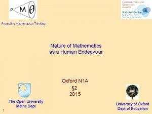 Promoting Mathematical Thinking Nature of Mathematics as a