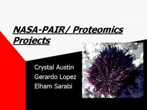 NASAPAIR Proteomics Projects Crystal Austin Gerardo Lopez Elham