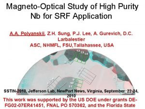 MagnetoOptical Study of High Purity Nb for SRF