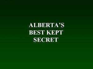 ALBERTAS BEST KEPT SECRET KARELIAN BEAR DOGS Primary