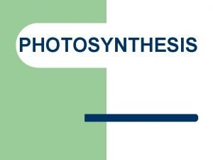 PHOTOSYNTHESIS Photosynthetic Organisms l l All life on