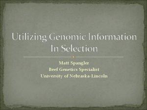 Matt Spangler Beef Genetics Specialist University of NebraskaLincoln