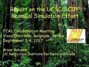 Report on the UCSCSCIPP Beam Cal Simulation Effort