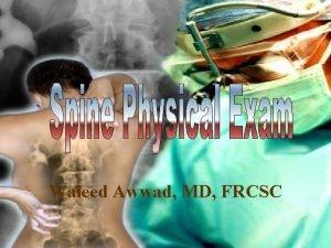 Waleed Awwad MD FRCSC Anatomy Spinal Column Anatomy