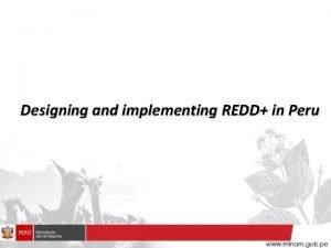 Designing and implementing REDD in Peru Peru in