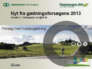 Nyt fra gdningsforsgene 2013 Annette V Vestergaard avvvfl