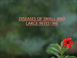 DISEASES OF SMALL AND LARGE INTESTINE Diseases of