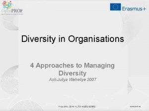 Diversity in Organisations 4 Approaches to Managing Diversity