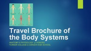 Travel Brochure of the Body Systems ANATOMY PHYSIOLOGY