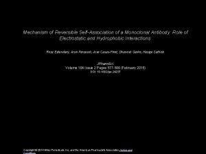 Mechanism of Reversible SelfAssociation of a Monoclonal Antibody