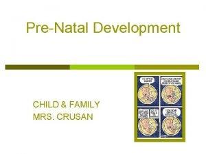 PreNatal Development CHILD FAMILY MRS CRUSAN Prenatal Development