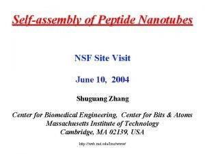 Selfassembly of Peptide Nanotubes NSF Site Visit June