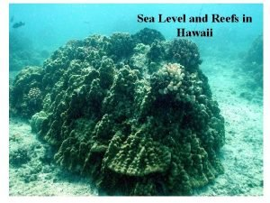 Sea Level and Reefs in Hawaii Reefs 300